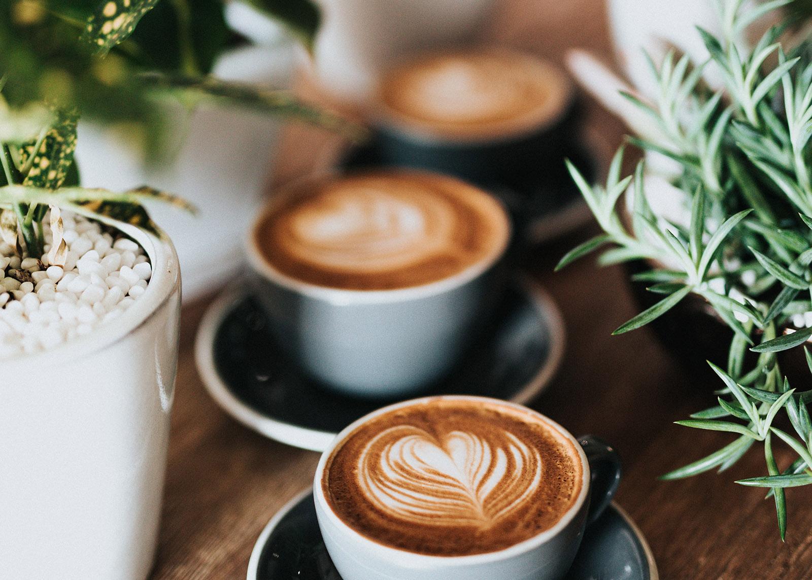 Kaffeetassen in Working Café mit Pflanzen