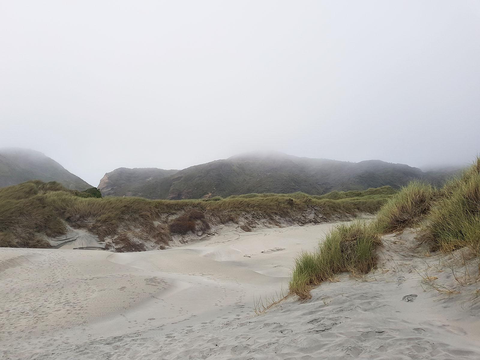 Wharariki Beach in Südinsel Neuseeland