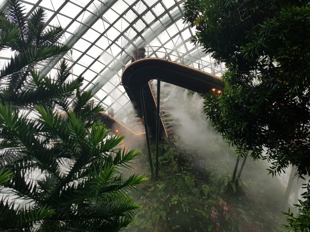 Cloud Forest mit Nebel in Singapur