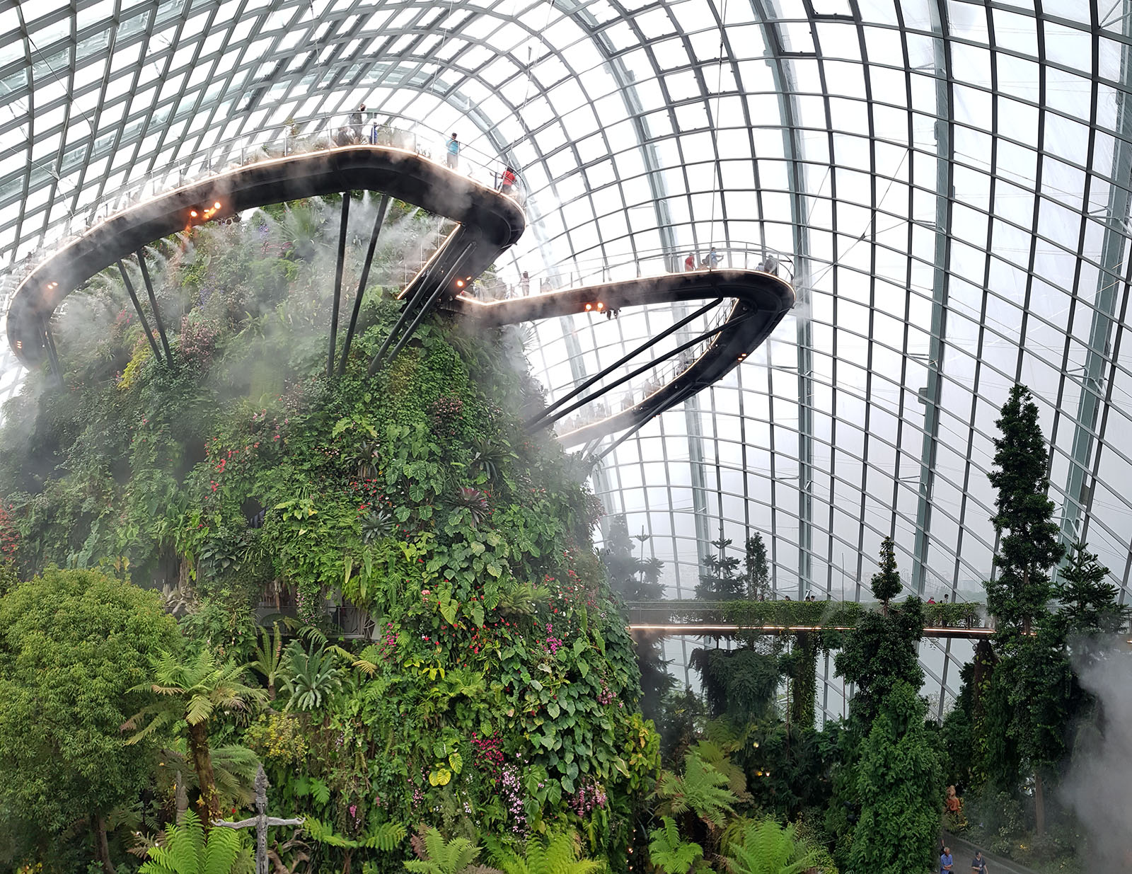 Backpacking in Singapur Besuch im Cloud Forest