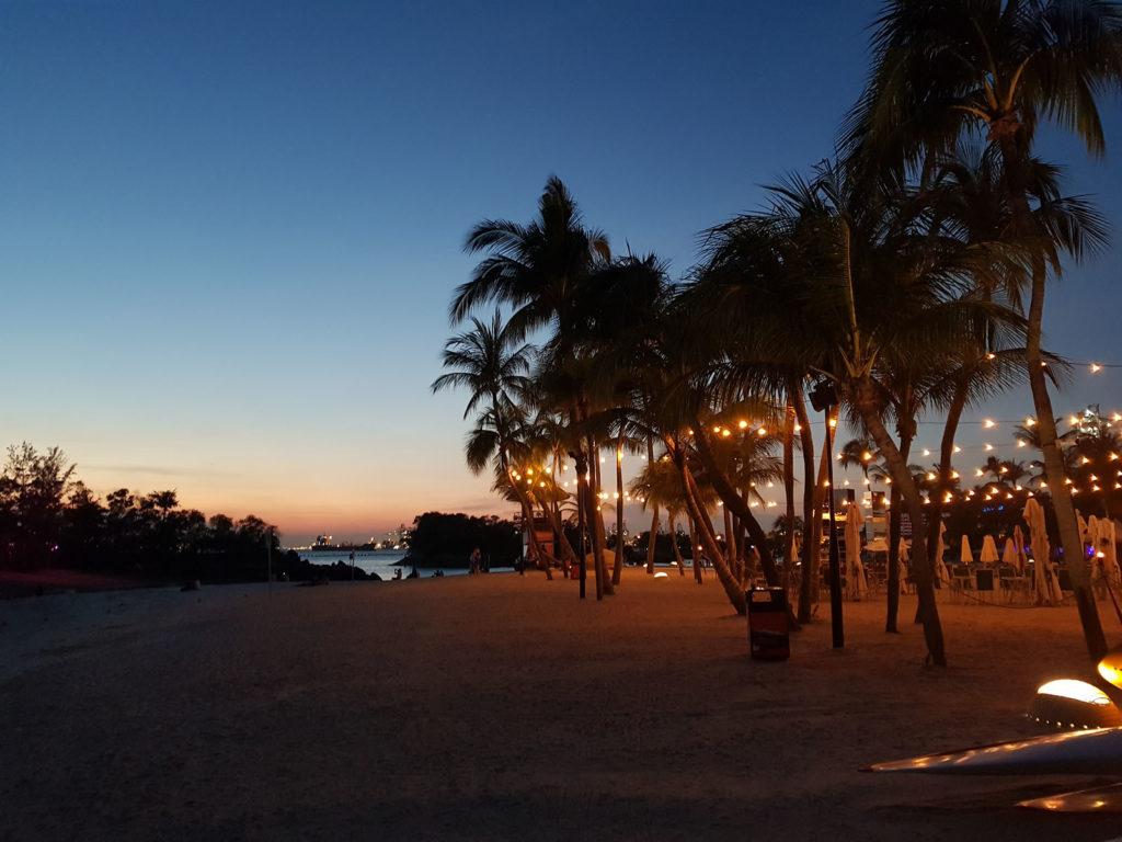 Beleuchtete Palmen am Abend auf Sentosa-Insel