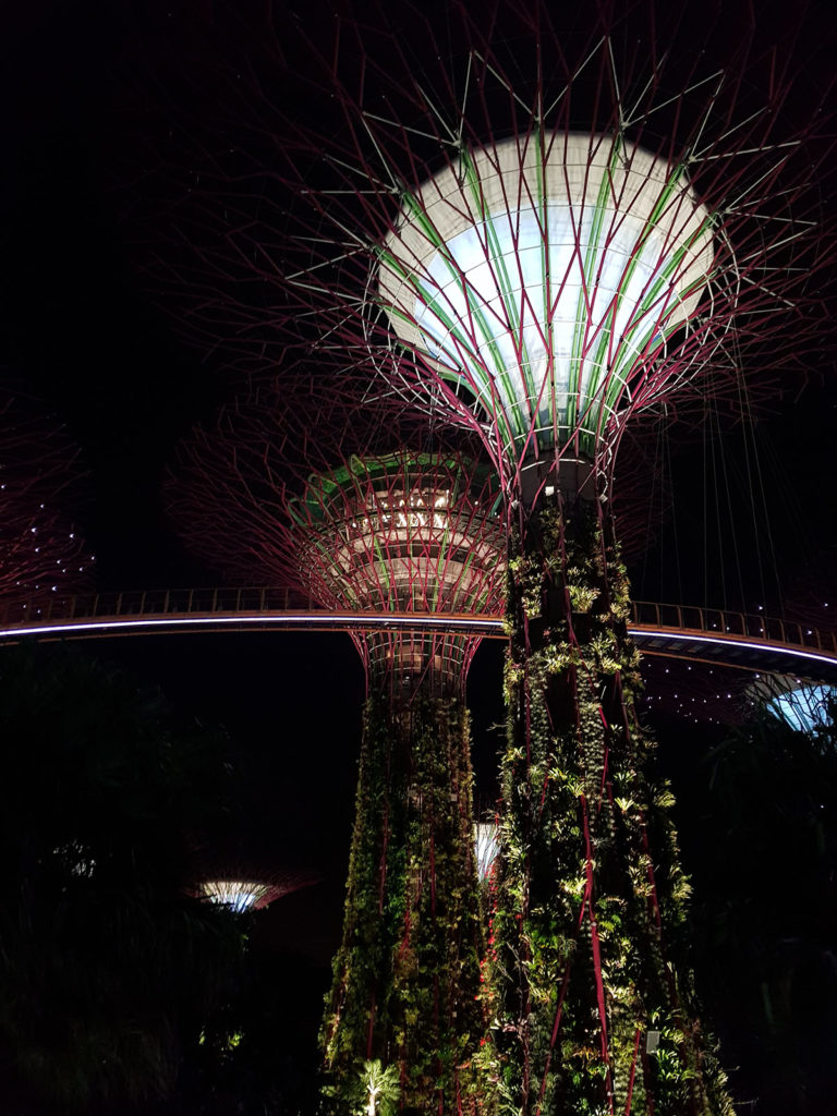 Supertree in Garden by the bays Singapur