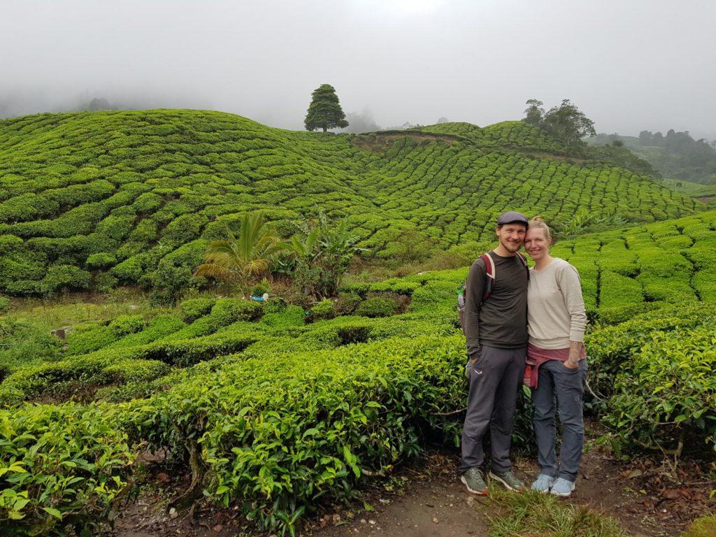 Mann und Frau in Teeplantagen