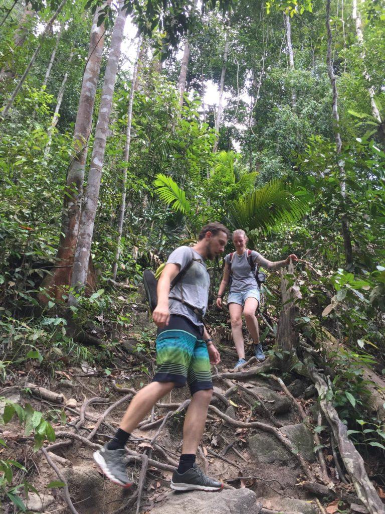 Wanderung zu Kanching Wasserfall durch Dschungel
